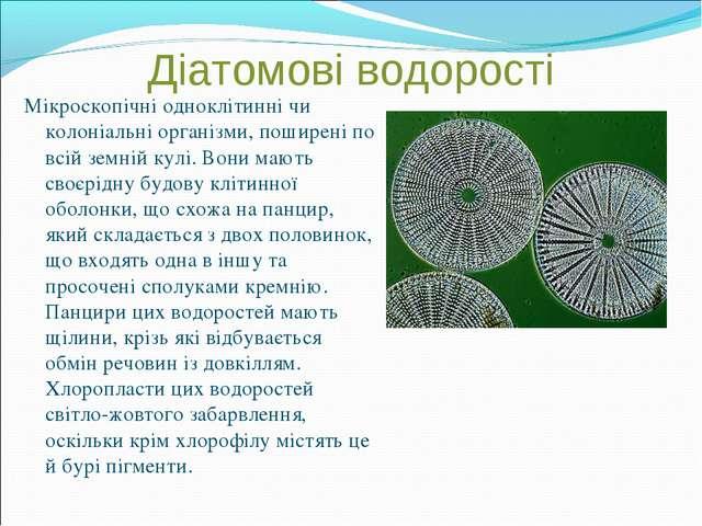 Діатомові водорості Мікроскопічні одноклітинні чи колоніальні організми, поши...