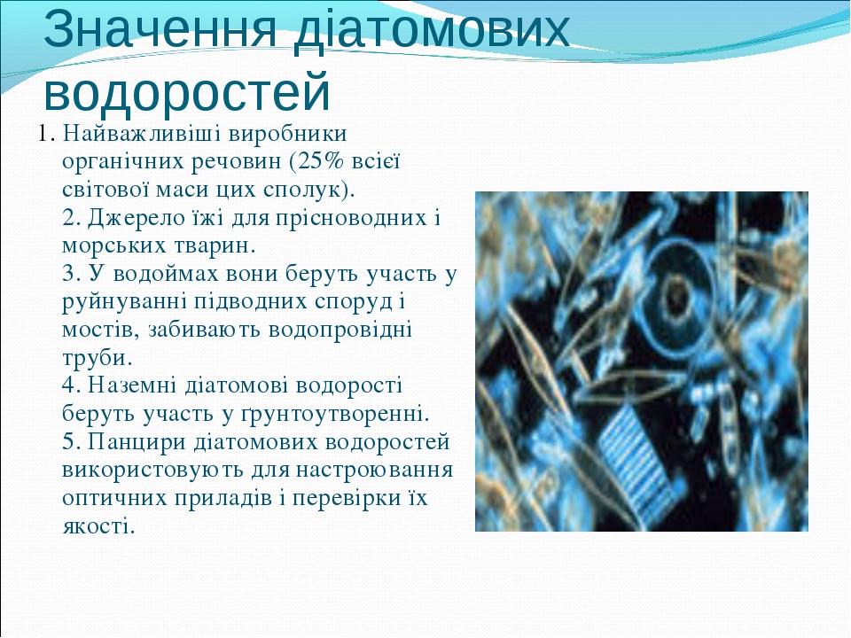 Значення діатомових водоростей 1. Найважливіші виробники органічних речовин (...