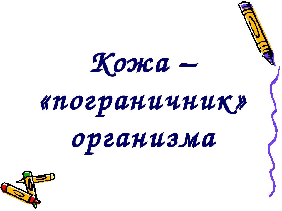 Кожа – «пограничник» организма