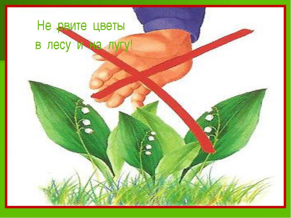 картинки защитить растения забывайте также про