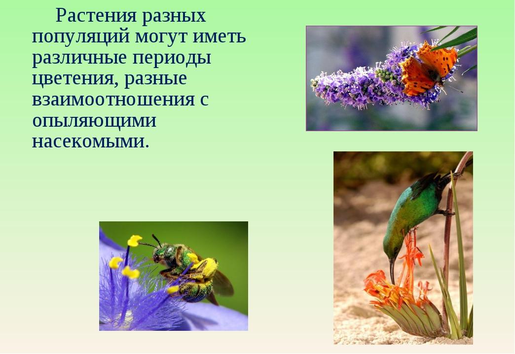 Растения разных популяций могут иметь различные периоды цветения, разные вза...