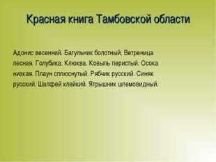 Красная книга Тамбовской области Адонис весенний. Багульник болотный. Ветрени