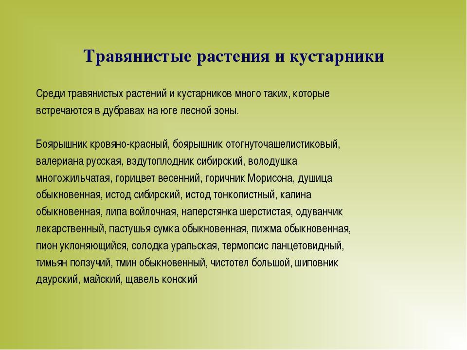 Травянистые растения и кустарники Среди травянистых растений и кустарников мн...