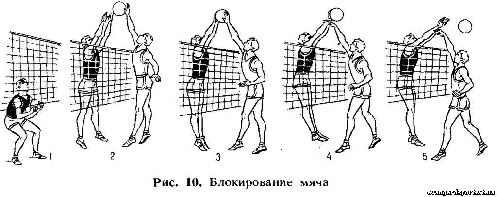 http://avangardsport.at.ua/_bl/0/92762159.jpg