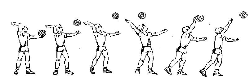 http://voleibol-texnika.narod.ru/3.PNG