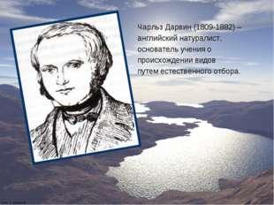 Чарльз Дарвин (1809-1882) – английский натуралист, основатель учения о происх