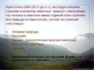 Аристотель (384-322 гг.до н.э.), исследуя внешнее строение и развитие животны