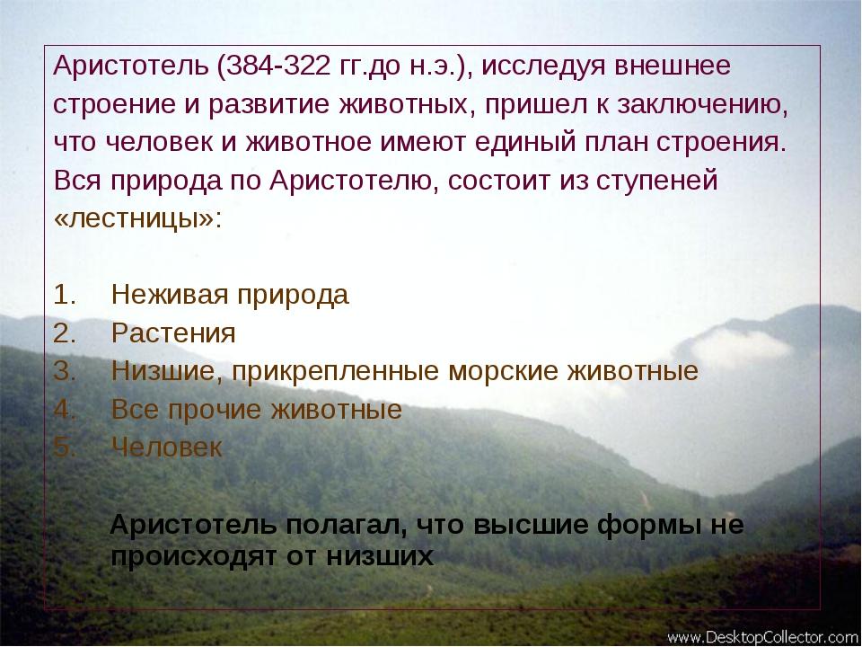 Аристотель (384-322 гг.до н.э.), исследуя внешнее строение и развитие животны...