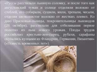 «Руссы расстилали льняную соломку, и после того как августовский туман и солн