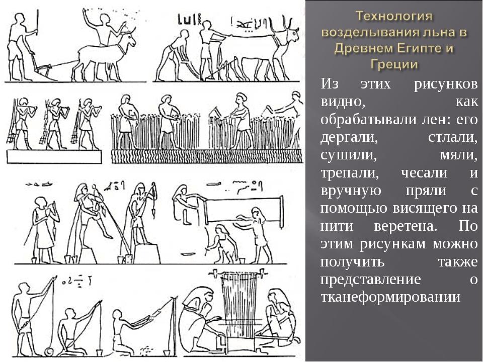 Из этих рисунков видно, как обрабатывали лен: его дергали, стлали, сушили, мя...