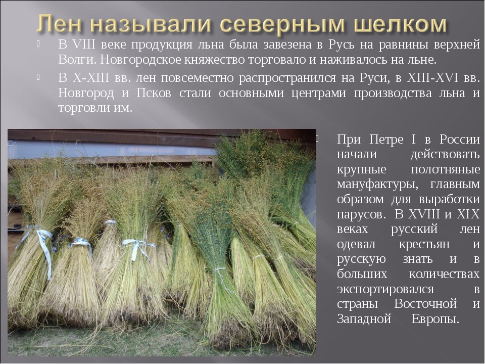 В VIII веке продукция льна была завезена в Русь на равнины верхней Волги. Нов...