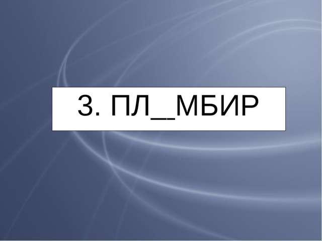 3. ПЛ МБИР