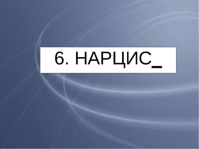 6. НАРЦИС_