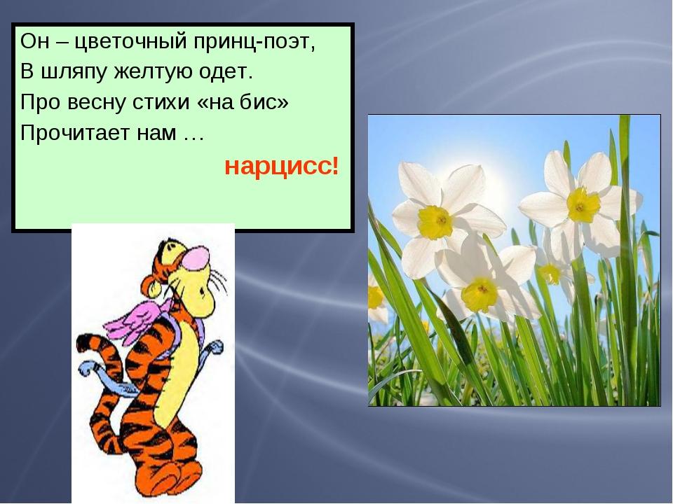 Он – цветочный принц-поэт, В шляпу желтую одет. Про весну стихи «на бис» Проч...