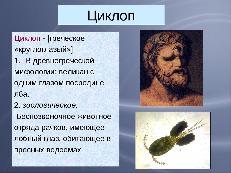 Циклоп Циклоп - [греческое «круглоглазый»]. В древнегреческой мифологии: вели...