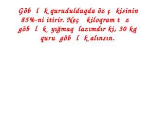 Göbələk qurudulduqda öz çəkisinin 85%-ni itirir. Neçə kiloqram təzə göbələk