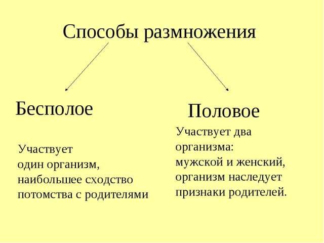 https://fs00.infourok.ru/images/doc/202/230695/640/img5.jpg