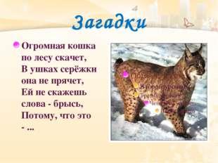 Загадки Огромная кошка по лесу скачет, В ушках серёжки она не прячет, Ей не с
