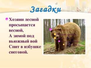 Загадки Хозяин лесной просыпается весной, Азимой под вьюжный вой Спит визбу