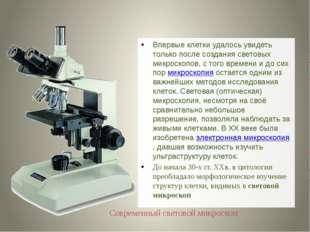 Впервые клетки удалось увидеть только после создания световых микроскопов, с