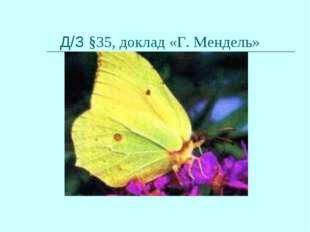 Д/З §35, доклад «Г. Мендель»