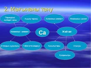 2. Мағынаны тану Периодтық жүйедегі орны Химиялық элемент Атомдық құрылысы Та