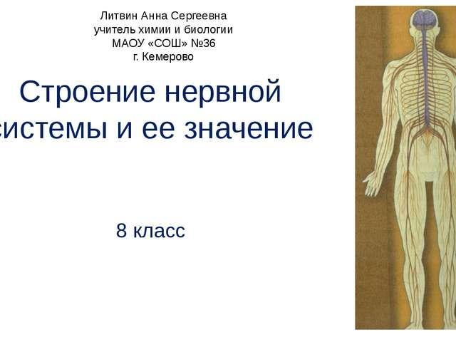 Строение нервной системы и ее значение 8 класс Литвин Анна Сергеевна учитель...
