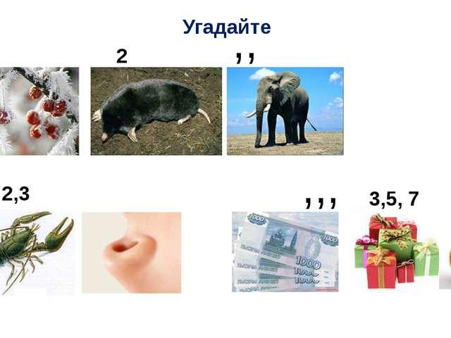 Угадайте , 2 ,, 2,3 ,,, 3,5, 7 ,,,