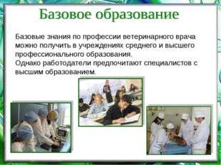 Базовые знания по профессии ветеринарного врача можно получить в учреждениях