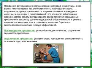 Профессия ветеринарного врача связана с любовью к животным, в ней важны такие