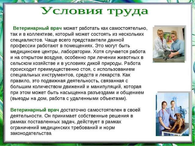 Ветеринарный врач может работать как самостоятельно, так и в коллективе, кот...