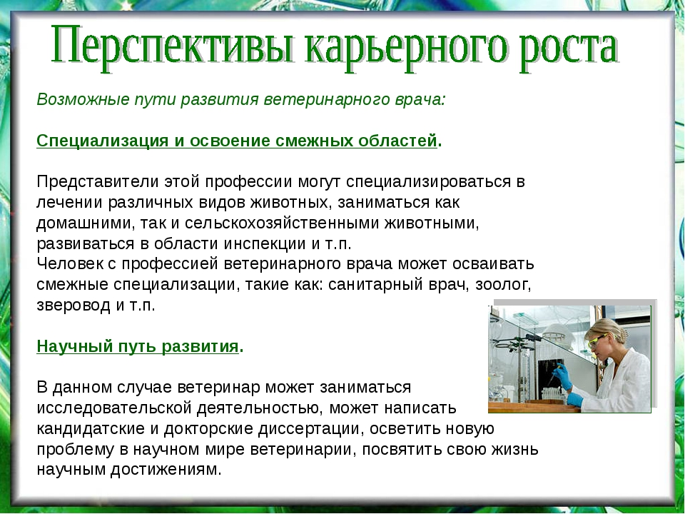 Возможные пути развития ветеринарного врача: Специализация и освоение смежных...