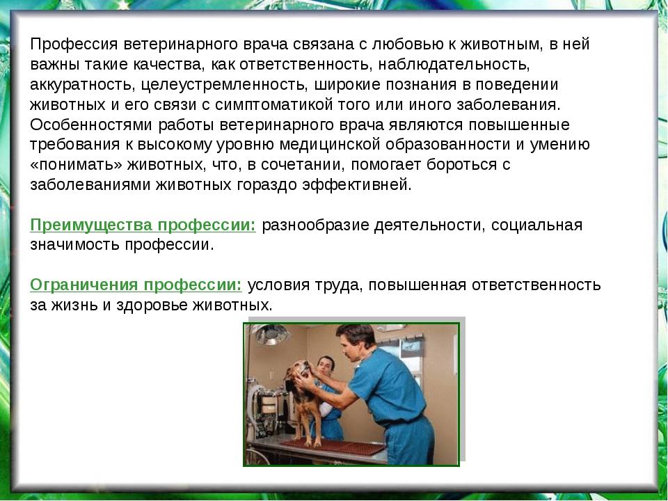 Профессия ветеринарного врача связана с любовью к животным, в ней важны такие...
