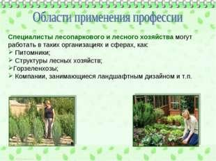 Специалисты лесопаркового и лесного хозяйства могут работать в таких организа