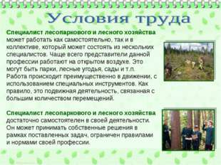 Специалист лесопаркового и лесного хозяйства может работать как самостоятельн