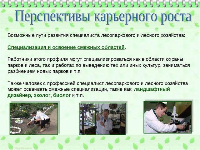 Возможные пути развития специалиста лесопаркового и лесного хозяйства: Специа...
