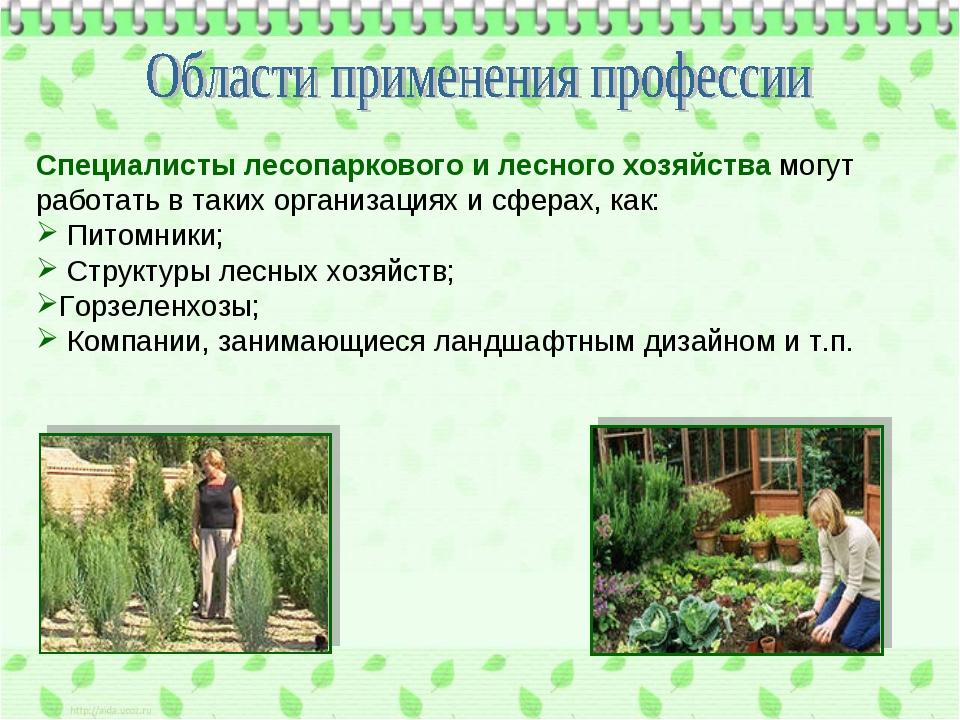 Специалисты лесопаркового и лесного хозяйства могут работать в таких организа...