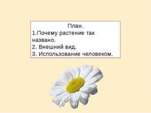 План. 1.Почему растение так названо. 2. Внешний вид. 3. Использование человек