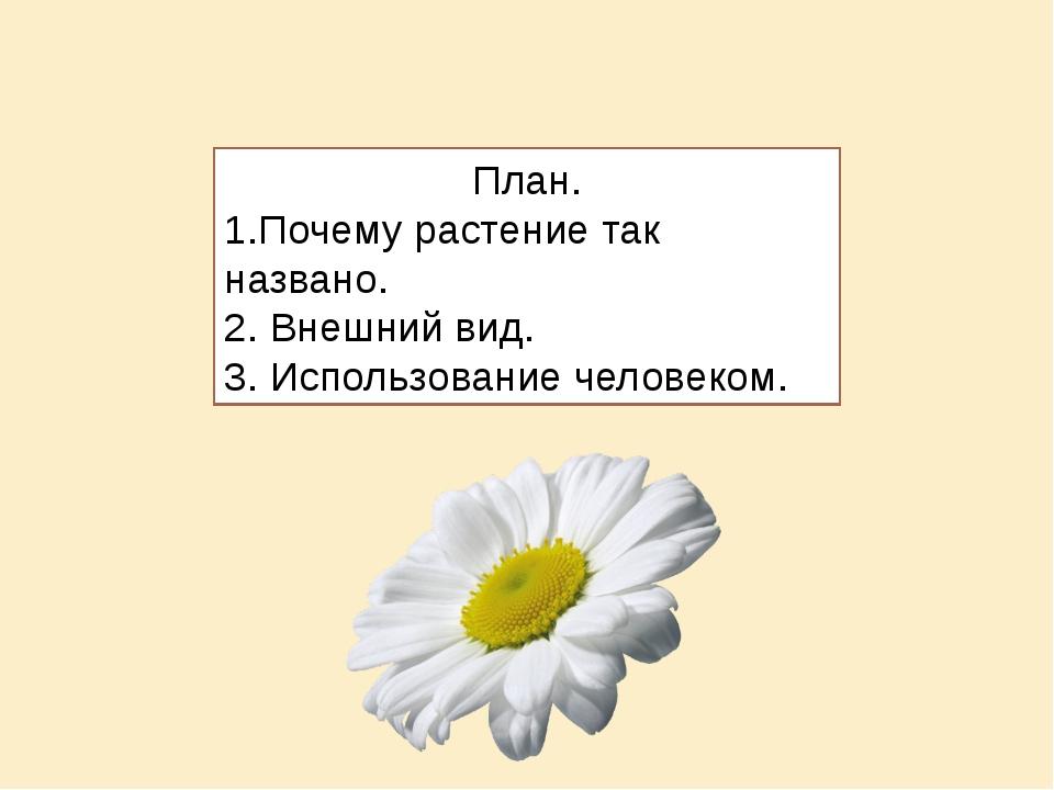 План. 1.Почему растение так названо. 2. Внешний вид. 3. Использование человек...
