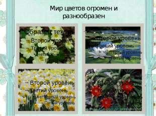 Мир цветов огромен и разнообразен