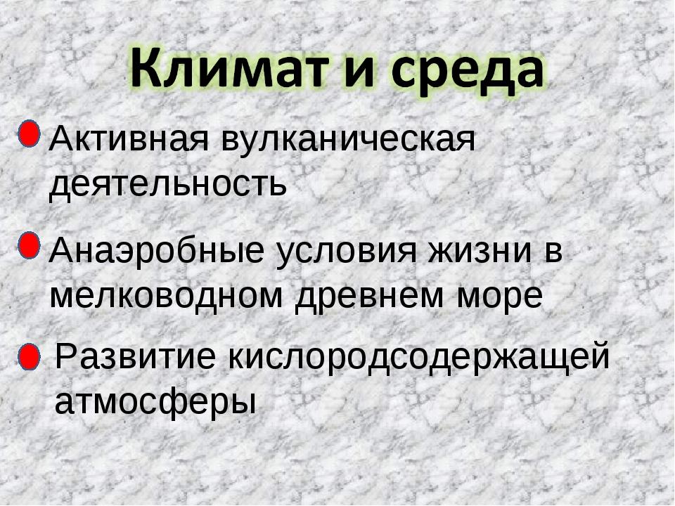 Активная вулканическая деятельность Анаэробные условия жизни в мелководном др...