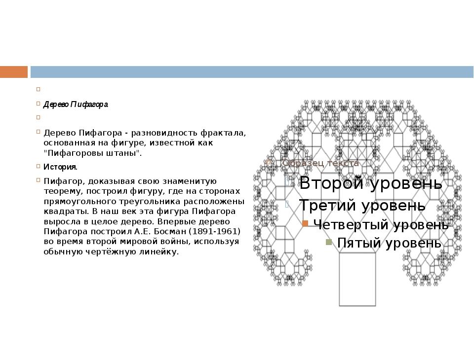 Дерево Пифагора  Дерево Пифагора - разновидность фрактала, основанная на...