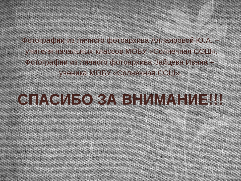 Фотографии из личного фотоархива Аллаяровой Ю.А. – учителя начальных классов...