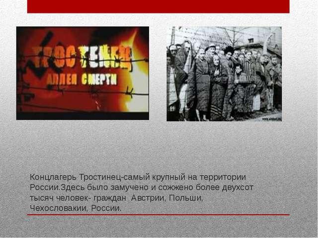 Концлагерь Тростинец-самый крупный на территории России.Здесь было замучено и...