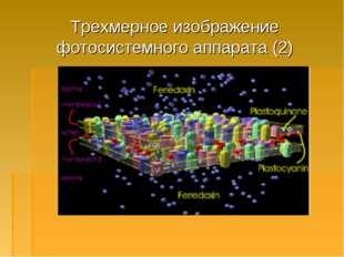 Трехмерное изображение фотосистемного аппарата (2)