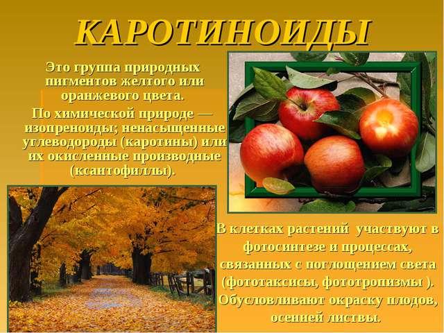 КАРОТИНОИДЫ Это группа природных пигментов желтого или оранжевого цвета. По х...