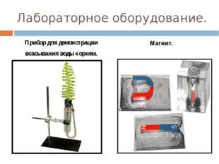 Лабораторное оборудование. Прибор для демонстрации всасывания воды корнем. Ма