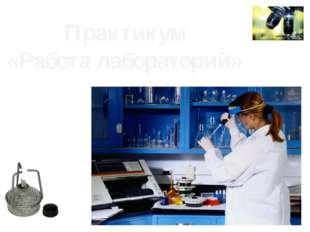 Практикум «Работа лабораторий»