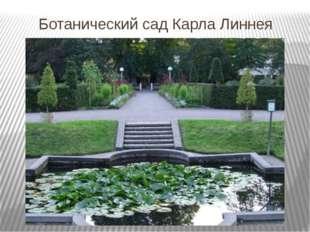 Ботанический сад Карла Линнея