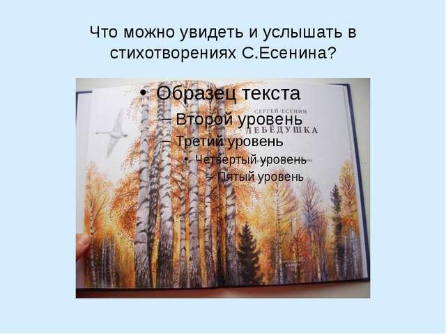 Что можно увидеть и услышать в стихотворениях С.Есенина?